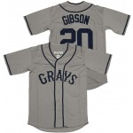 MLB Homestead Grays #20 Josh Gibson Grey jersey