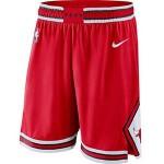 Men's Chicago Bulls Nike Red Icon Swingman Basketball Shorts